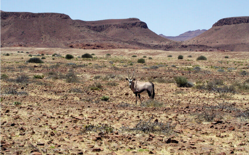 content-image-namibia-2