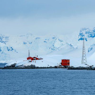 Antarctica vs Arctic bog header